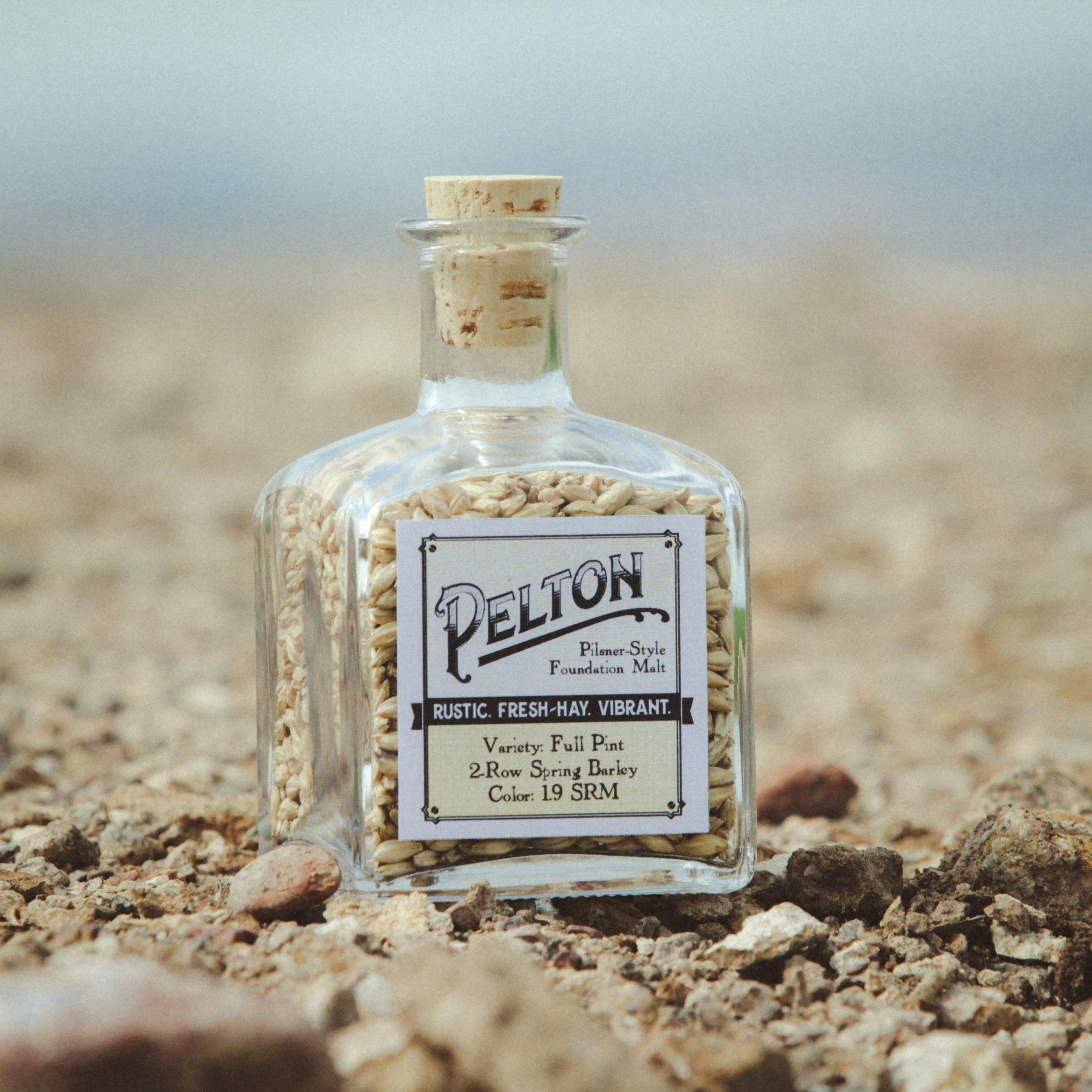Pelton Pilsner Style Malt from Mecca Grade Estate Malt in Madras Oregon