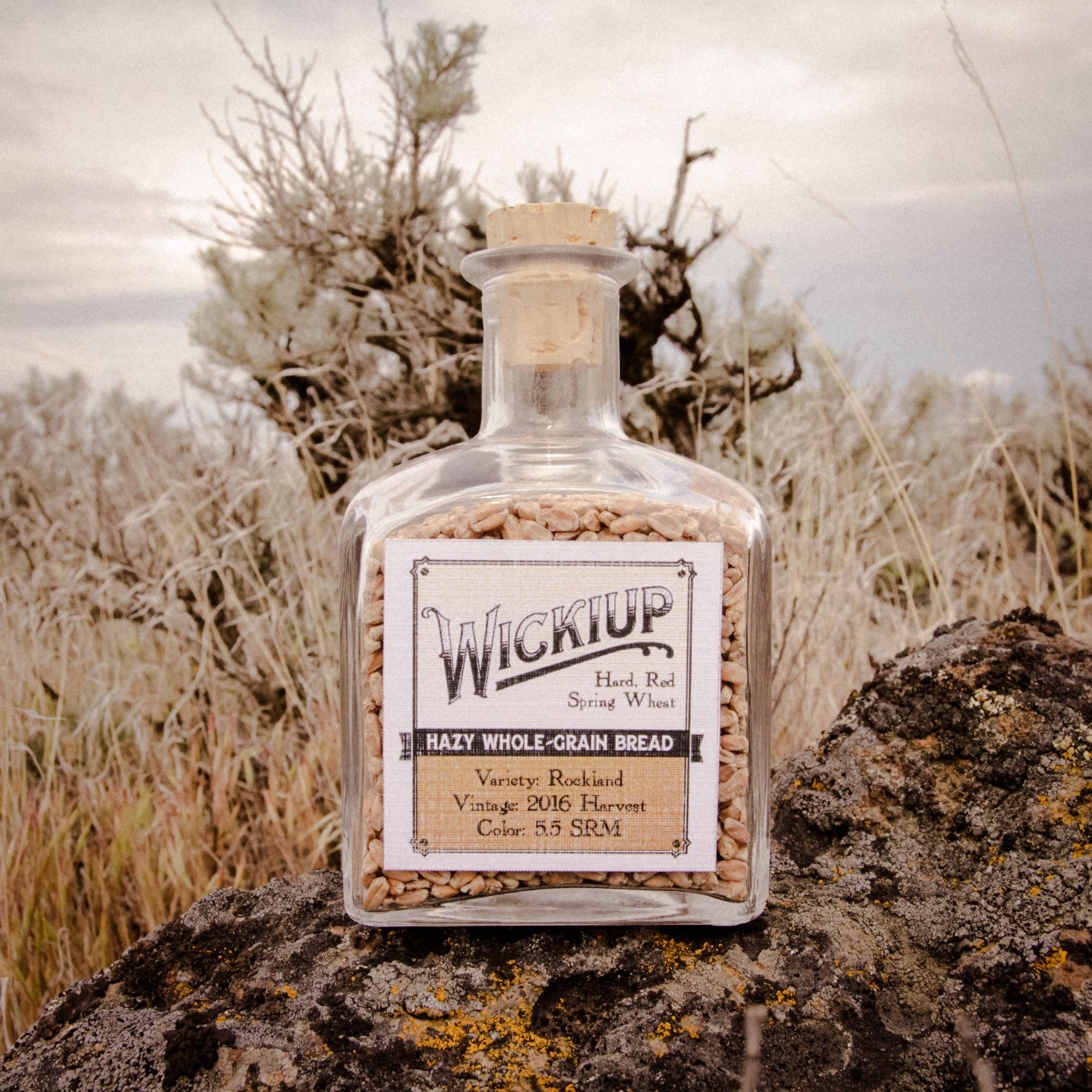 Wickiup Hard Red Spring Wheat from Mecca Grade Estate Malt in Madras Oregon