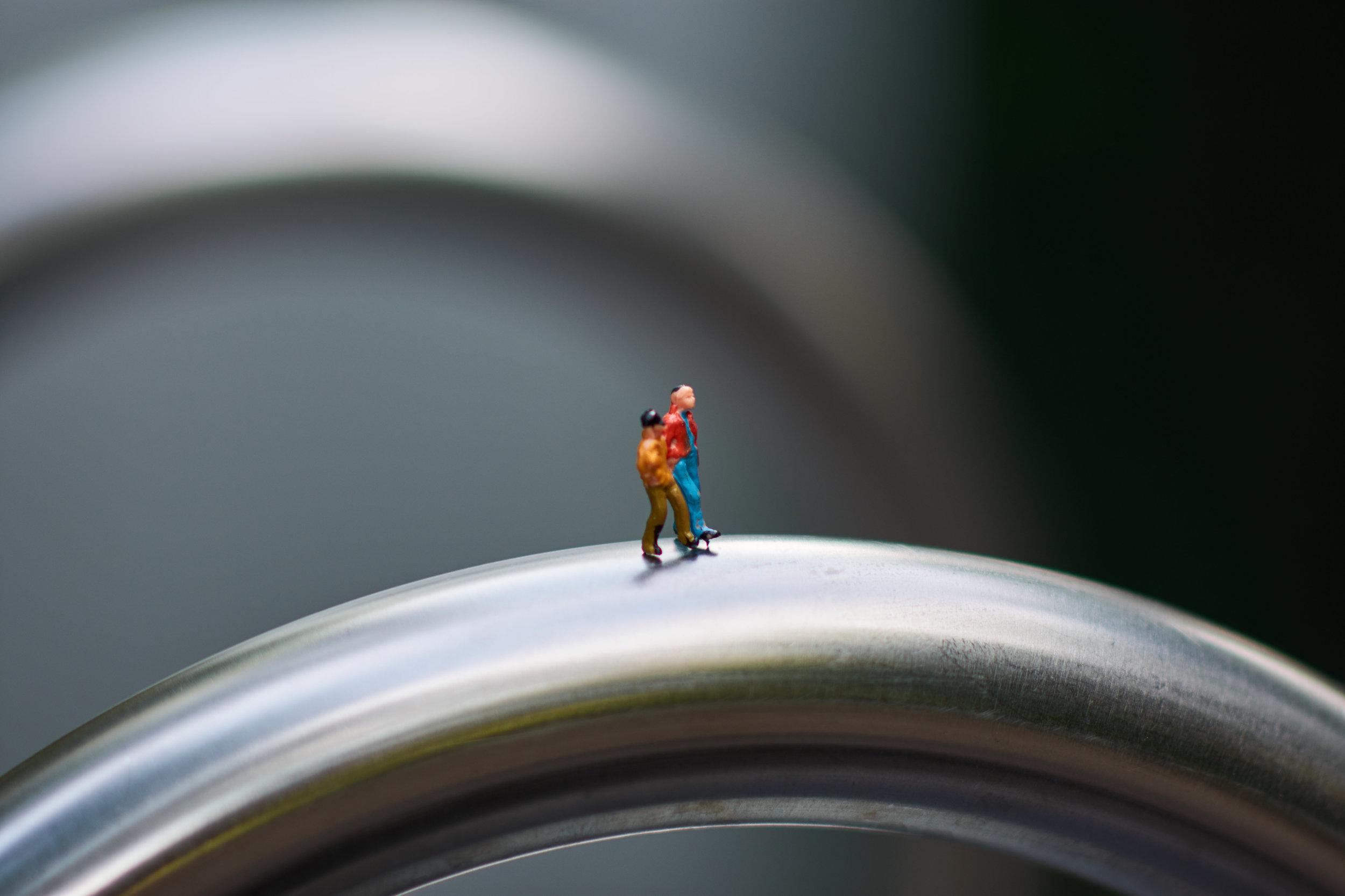 MiniatureDSC_0717.jpg