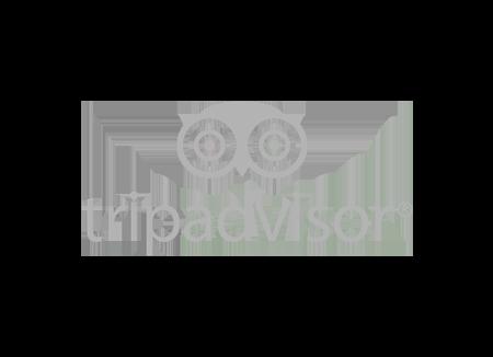 GreyTripAdvisor.png