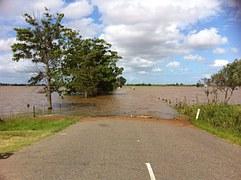 water damage to landscape