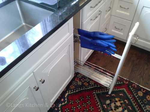 Kitchen design with specialized cleaning supply storage