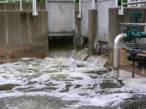 after-wastewater-has-been-disi-150849-m.jpg