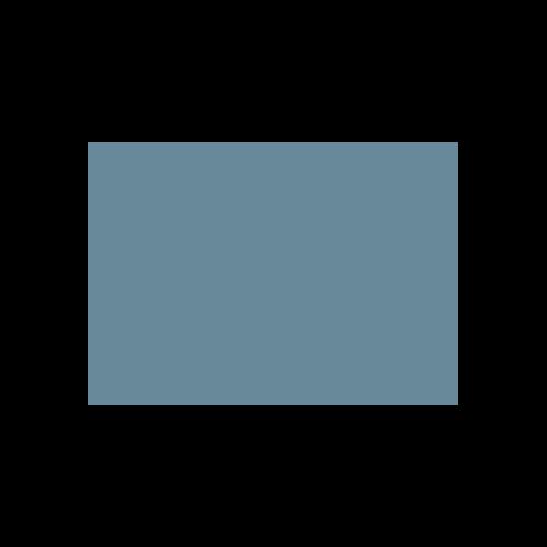 Big Lots.png
