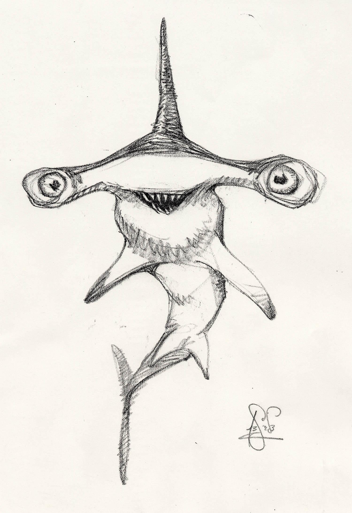 Sharks3b.jpg