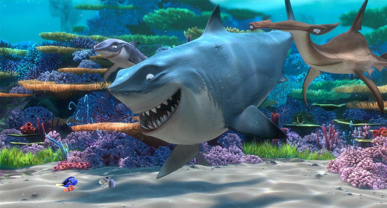 Sharks11.jpg
