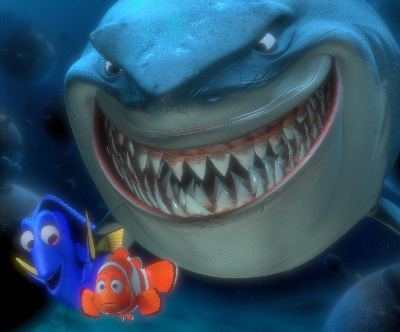 Sharks12.jpg