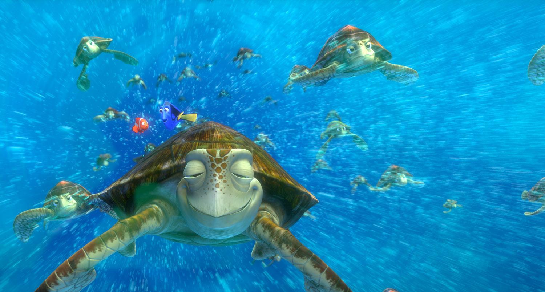 Turtles10.jpg