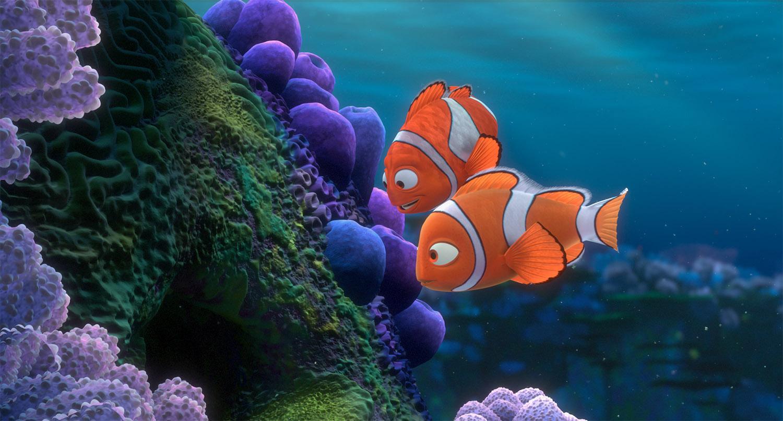 Coral9.jpg