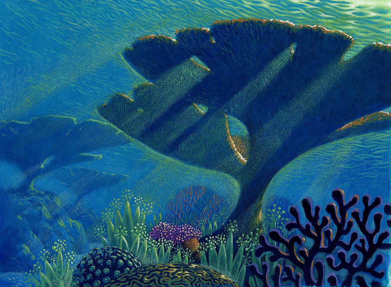 Reef1b.jpg
