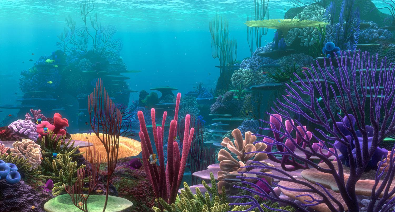 Reef14.jpg