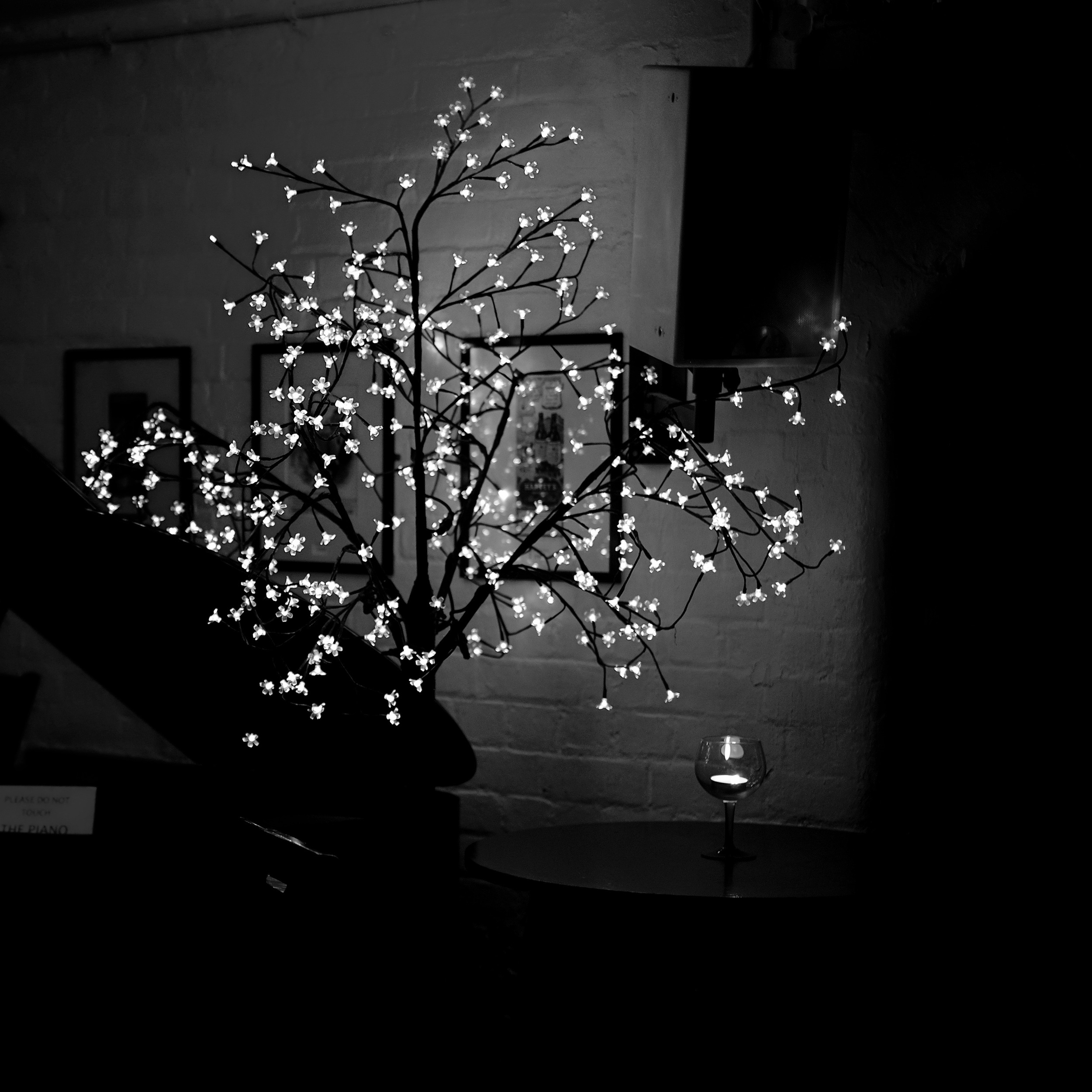 Star Tree