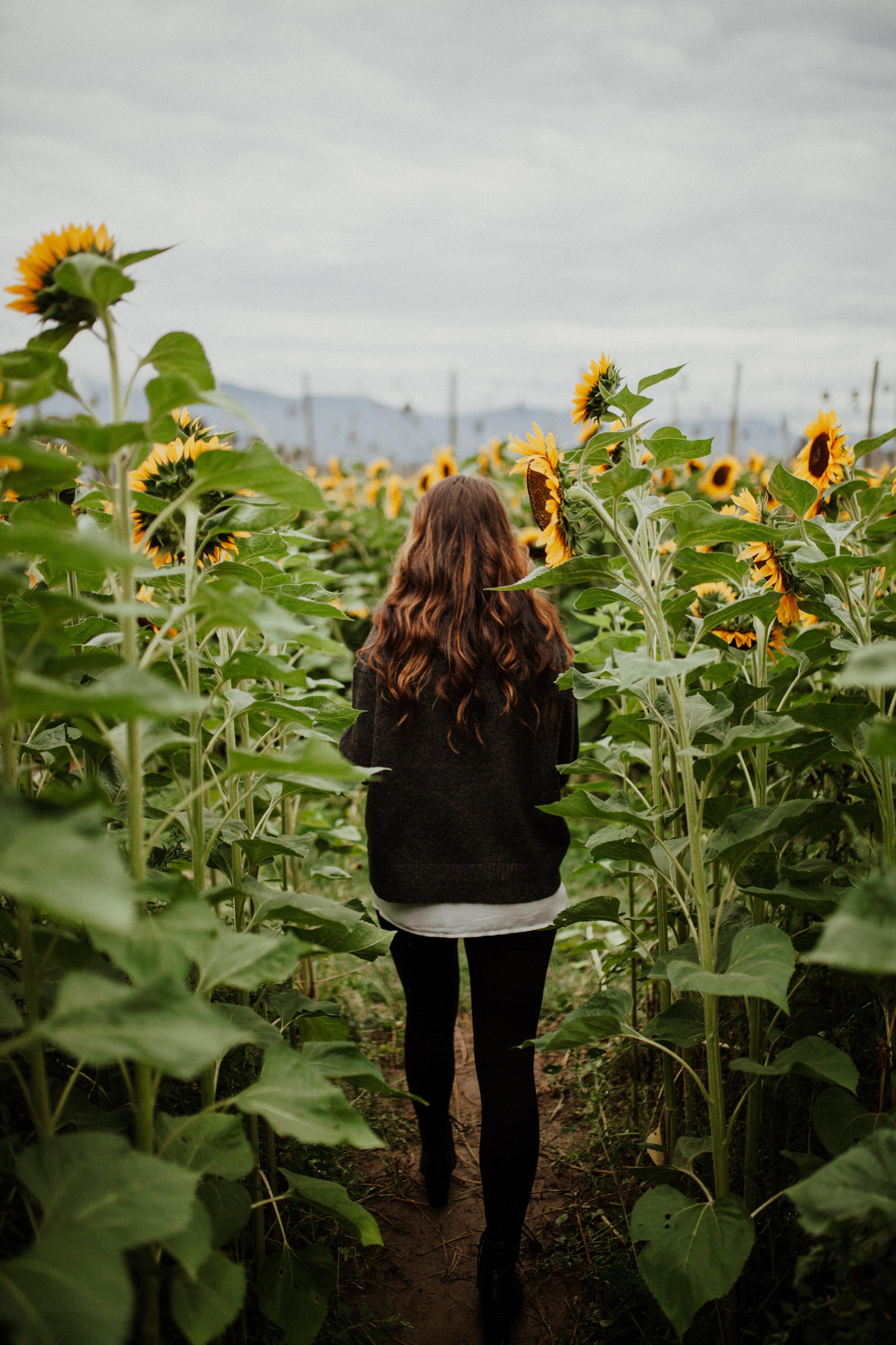 SunflowerFestival-4.jpg