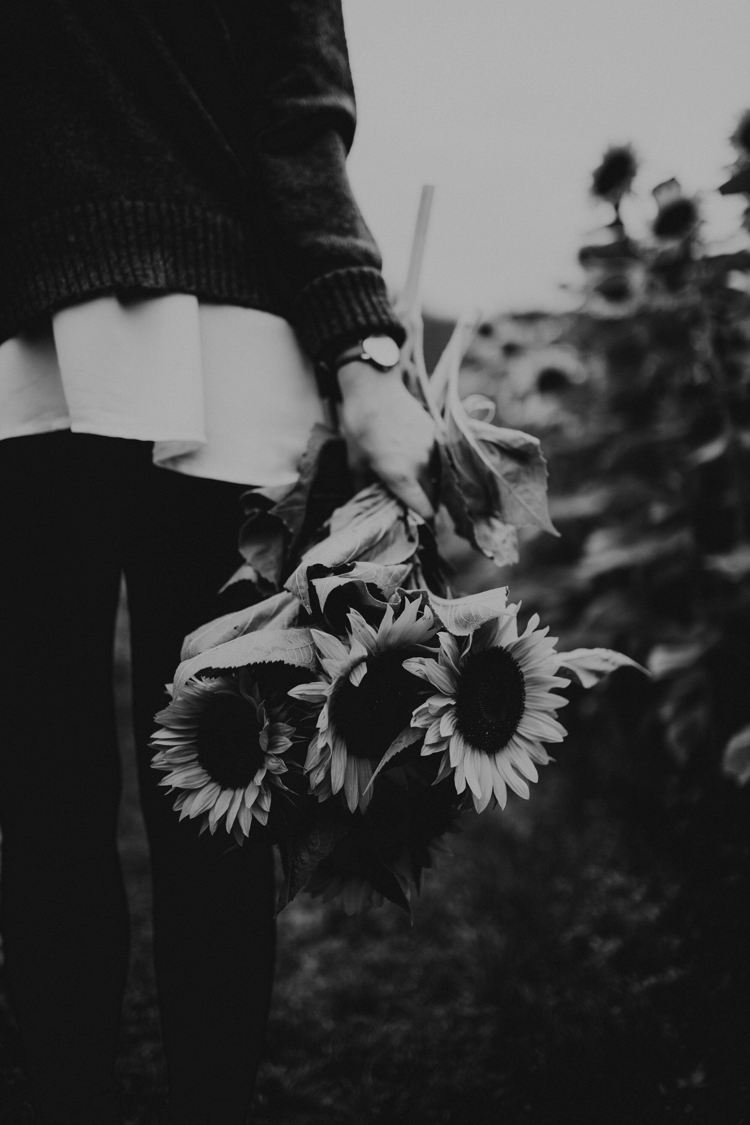 SunflowerFestival-37.jpg