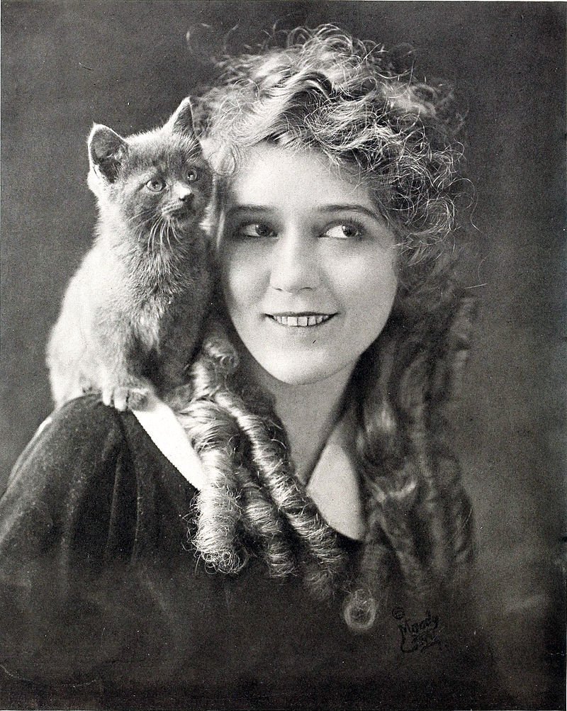 Mary Pickford and a kitten.
