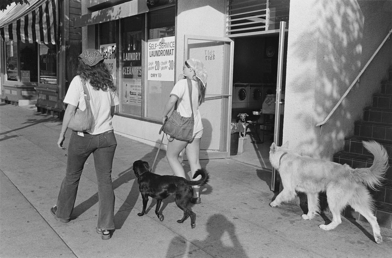 1976 | Berkeley