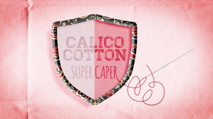 CalicoCotton_sign.jpg