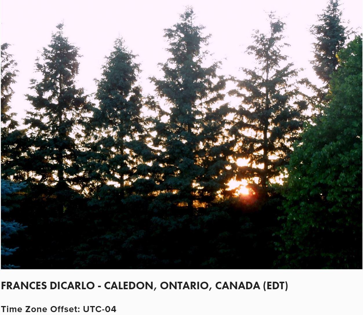 17 Frances DiCarlo - Caledon, CA.JPG