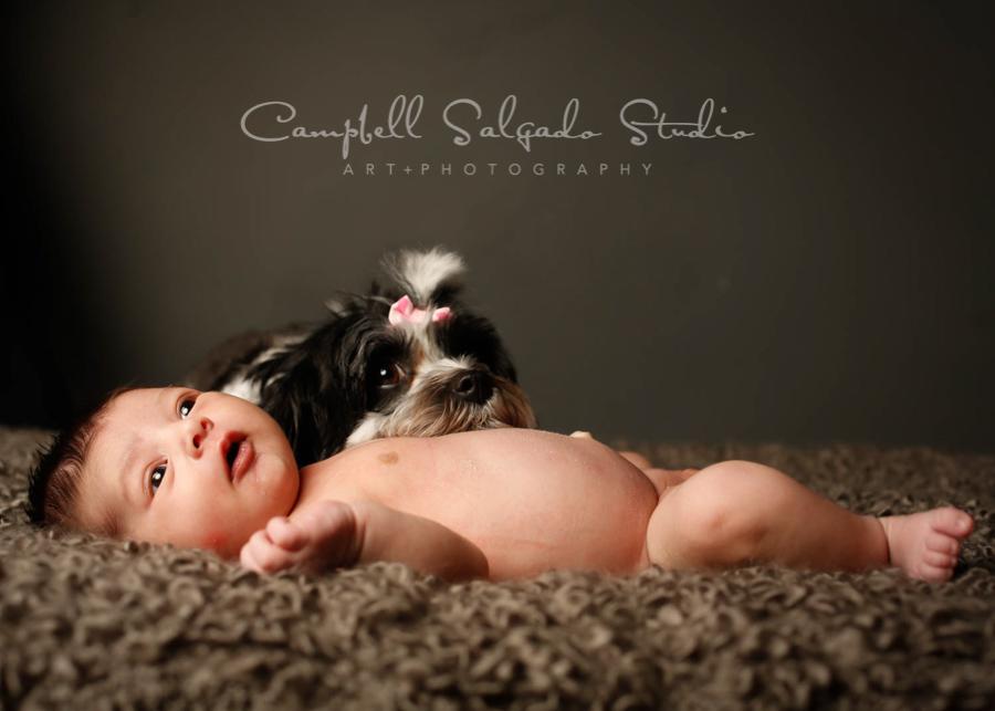Portrait of infant on gray background by newborn photographers at Campbell Salgado Studio in Portland, Oregon.