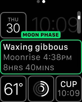 Modular Face showing Date, Moon Phase, Temperature, Activity and World Clock  complications