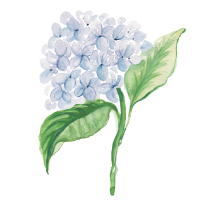 Watercolor-Floral-Course-Icon.png