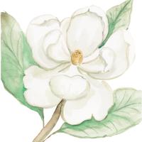 Magnolia-Icon.png