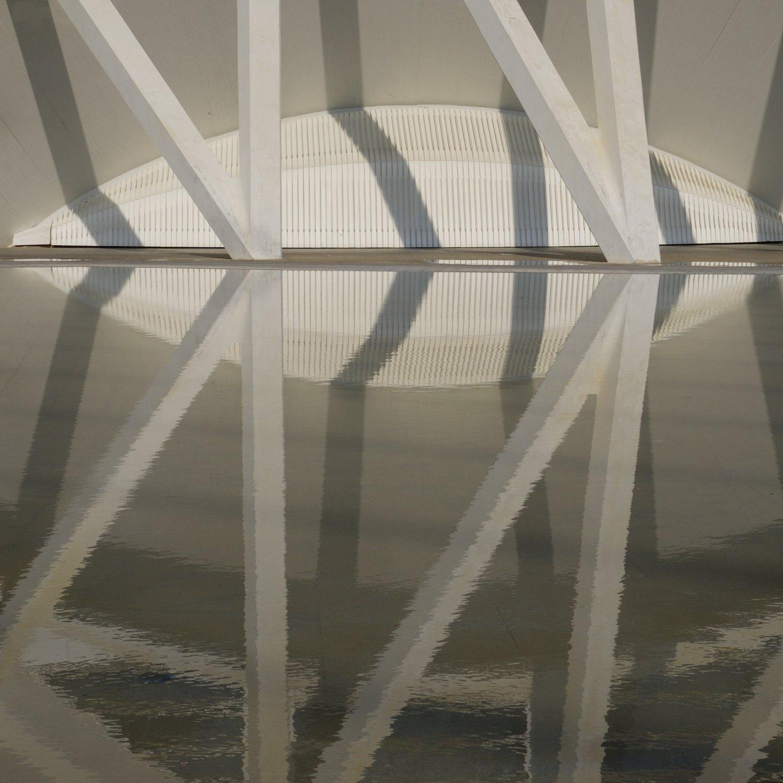 Christopher-Swan-Calatrava-Arts-Sciences-Valencia-2014 312014-09-30.jpg