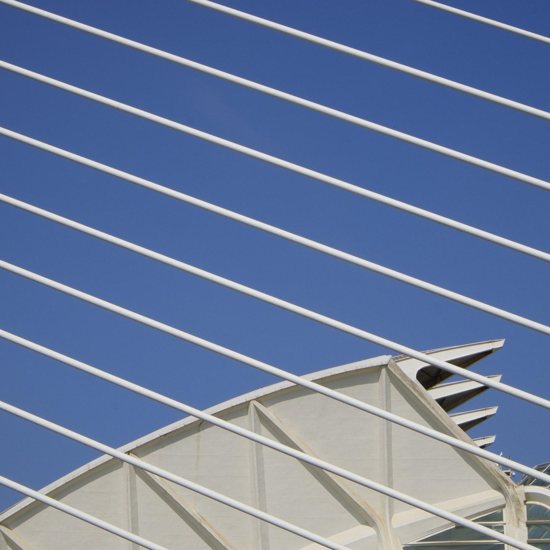 Christopher-Swan-Calatrava-Arts-Sciences-Valencia-2014 342014-09-30.jpg