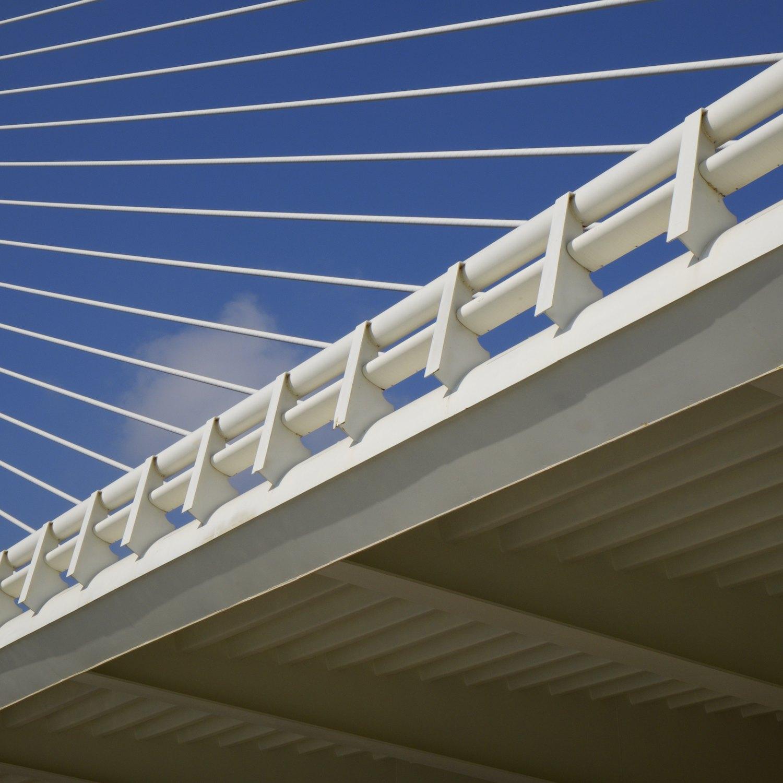 Christopher-Swan-Calatrava-Arts-Sciences-Valencia-2014 362014-09-30.jpg