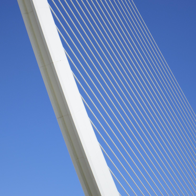 Christopher-Swan-Calatrava-Arts-Sciences-Valencia-2014 392014-09-30.jpg