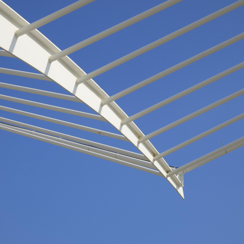Christopher-Swan-Calatrava-Arts-Sciences-Valencia-2014 412014-09-30.jpg