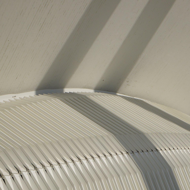 Christopher-Swan-Calatrava-Arts-Sciences-Valencia-2014 422014-09-30.jpg