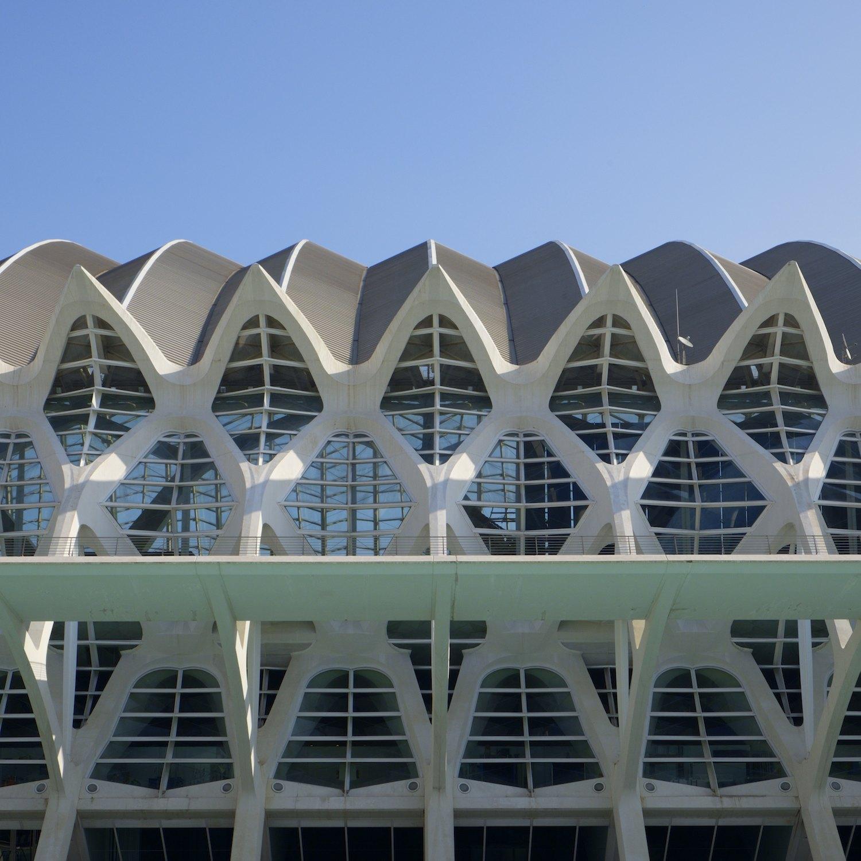 Christopher-Swan-Calatrava-Arts-Sciences-Valencia-2014 482014-09-30.jpg