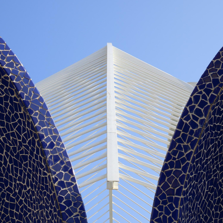 Christopher-Swan-Calatrava-Arts-Sciences-Valencia-2014 512014-09-30.jpg