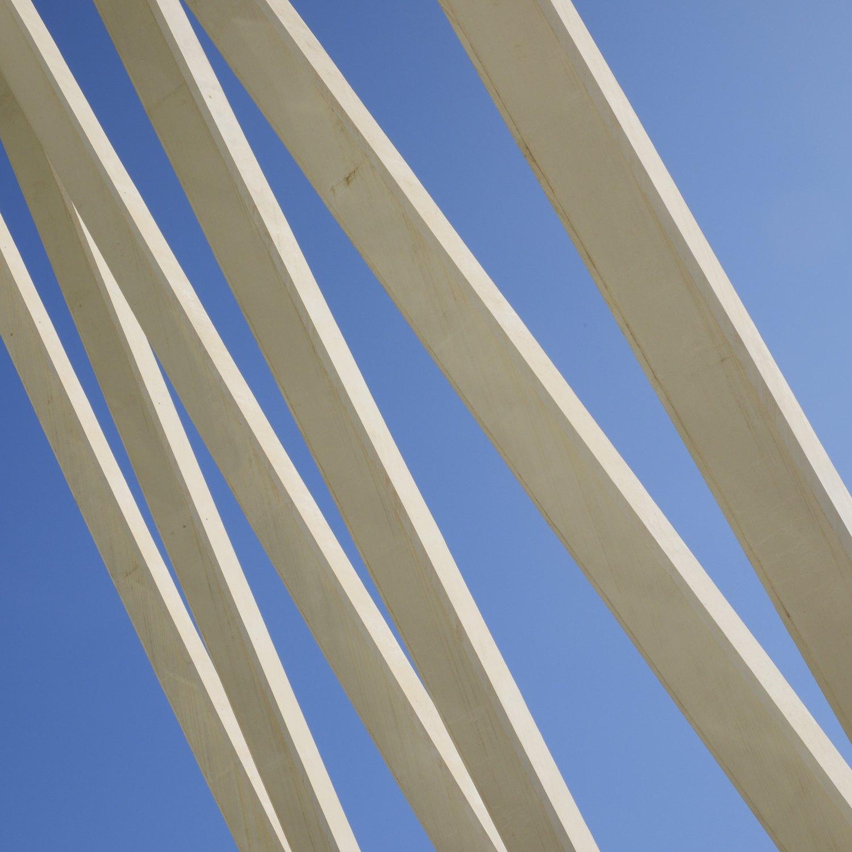 Christopher-Swan-Calatrava-Arts-Sciences-Valencia-2014 2014-09-30.jpg