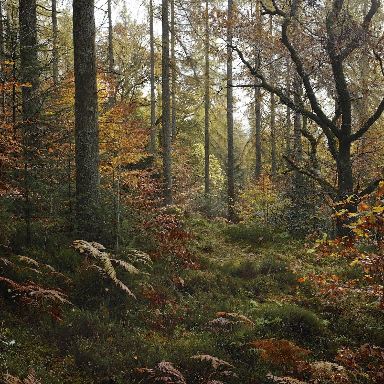Chris-Swan-Scottish-Landscape-Photographer-of-The-Year-SLPOTY-Shortlist-2014 09.jpg