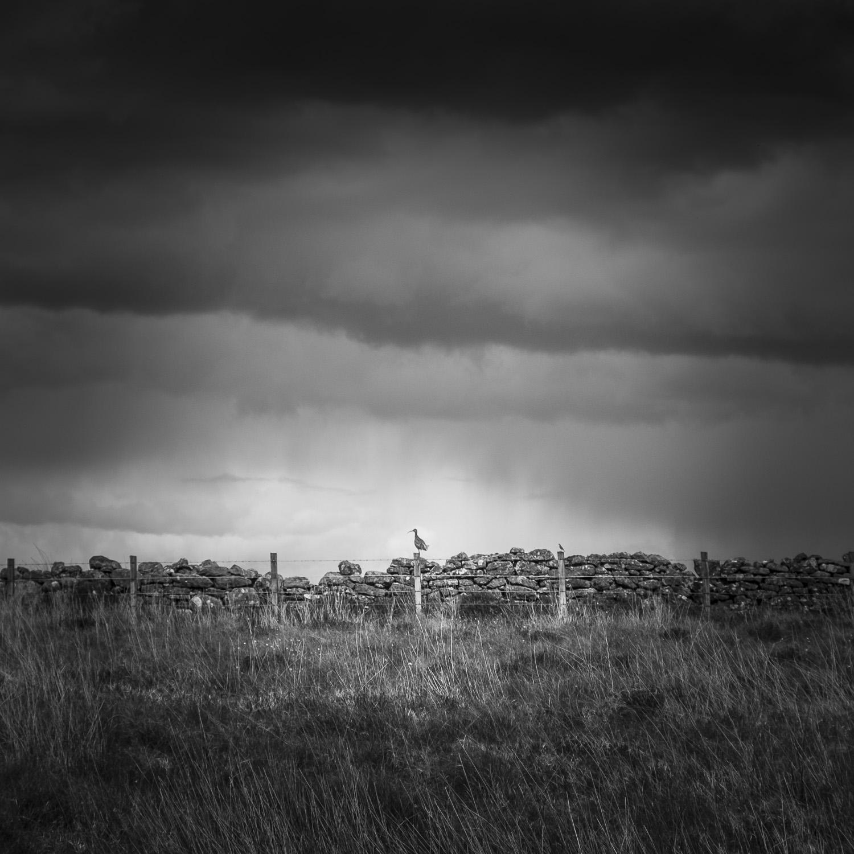 Christopher Swan Black and White Scotland-19.jpg
