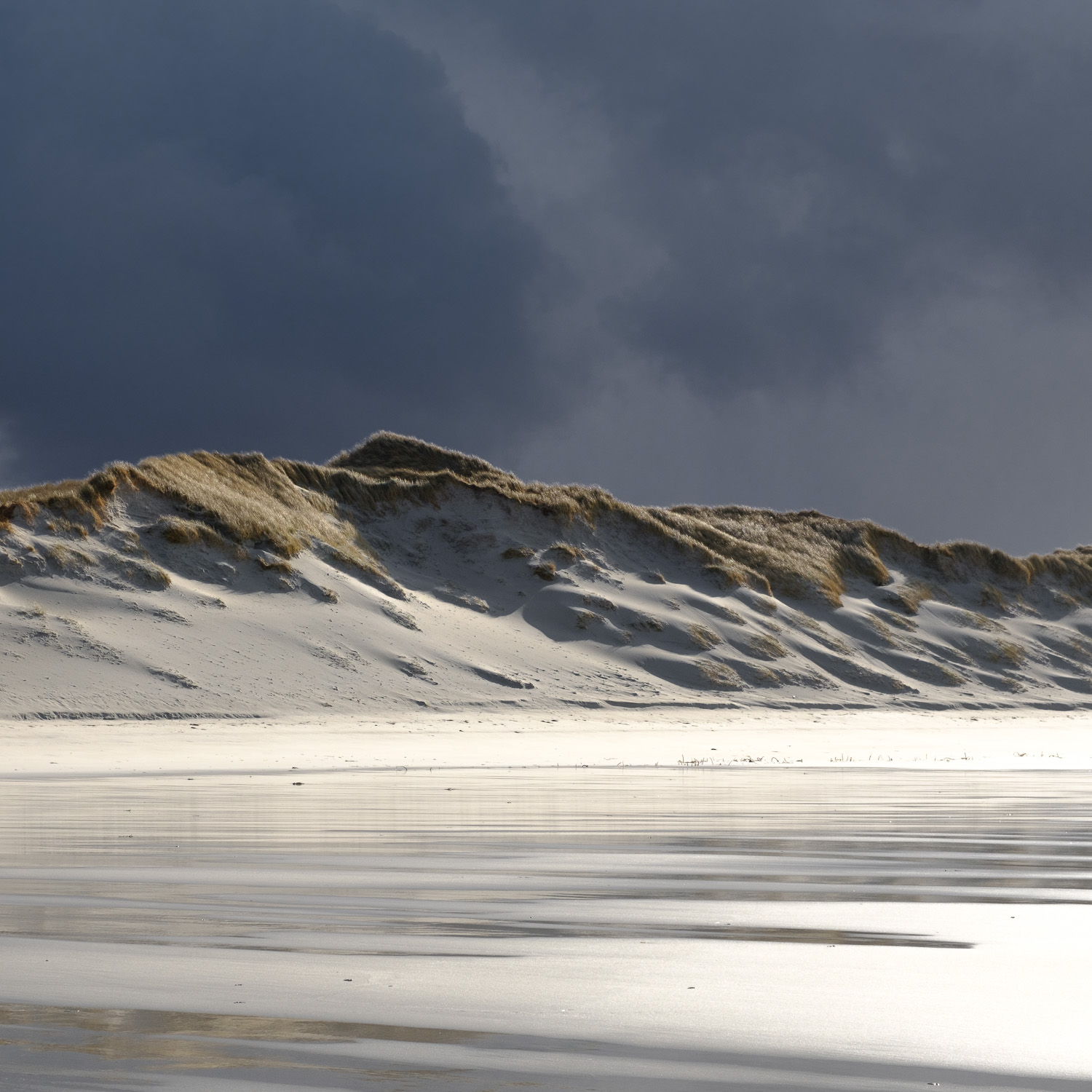 Windblown Dunes