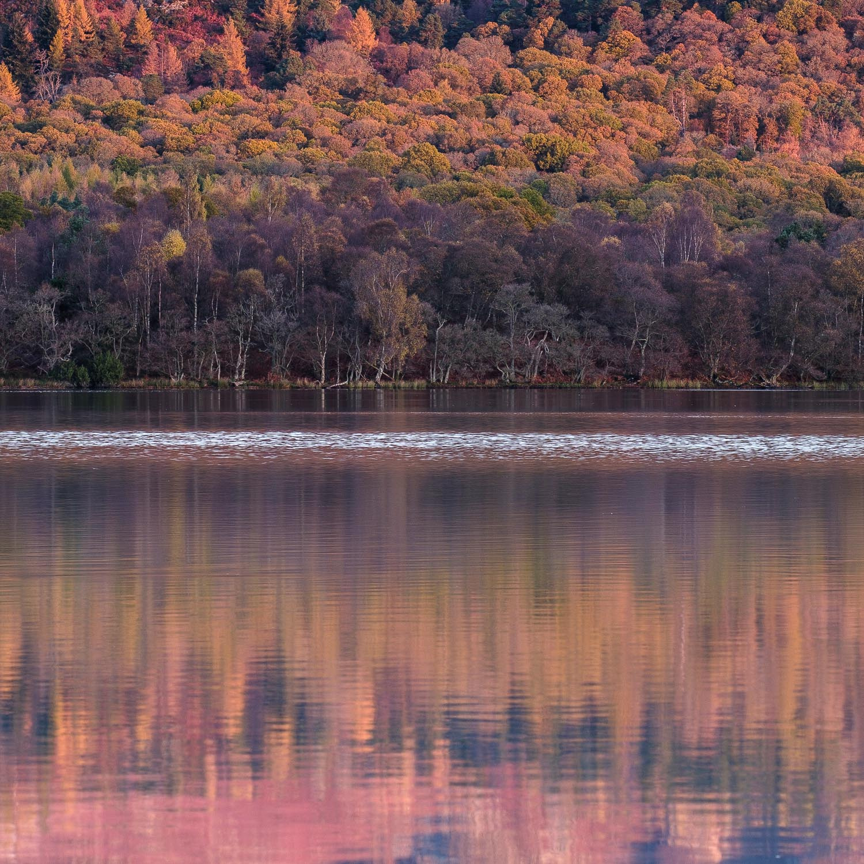 Christopher Swan-Perthshire-Autumn-2.jpg