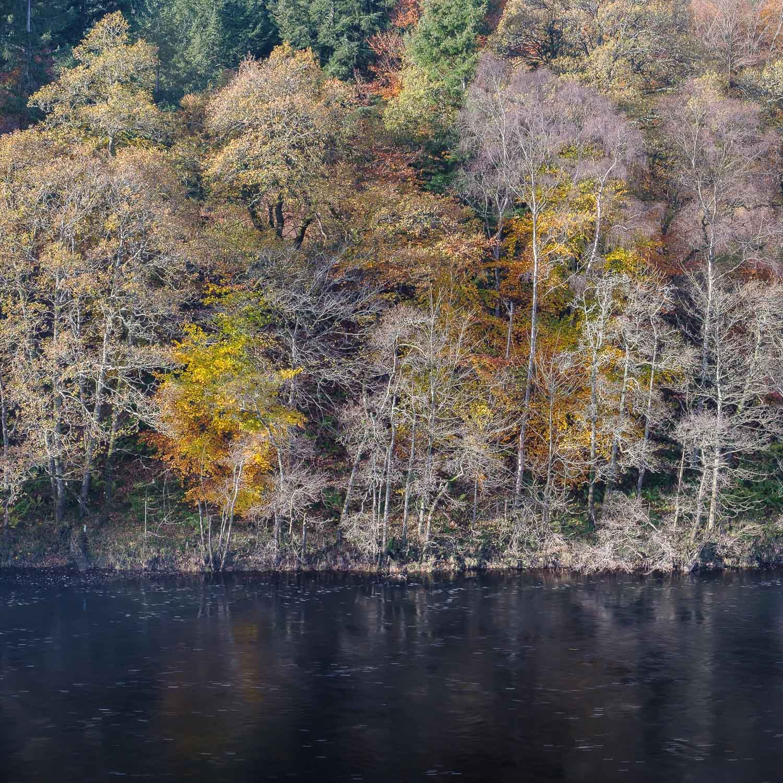 Christopher Swan-Perthshire-Autumn-15.jpg