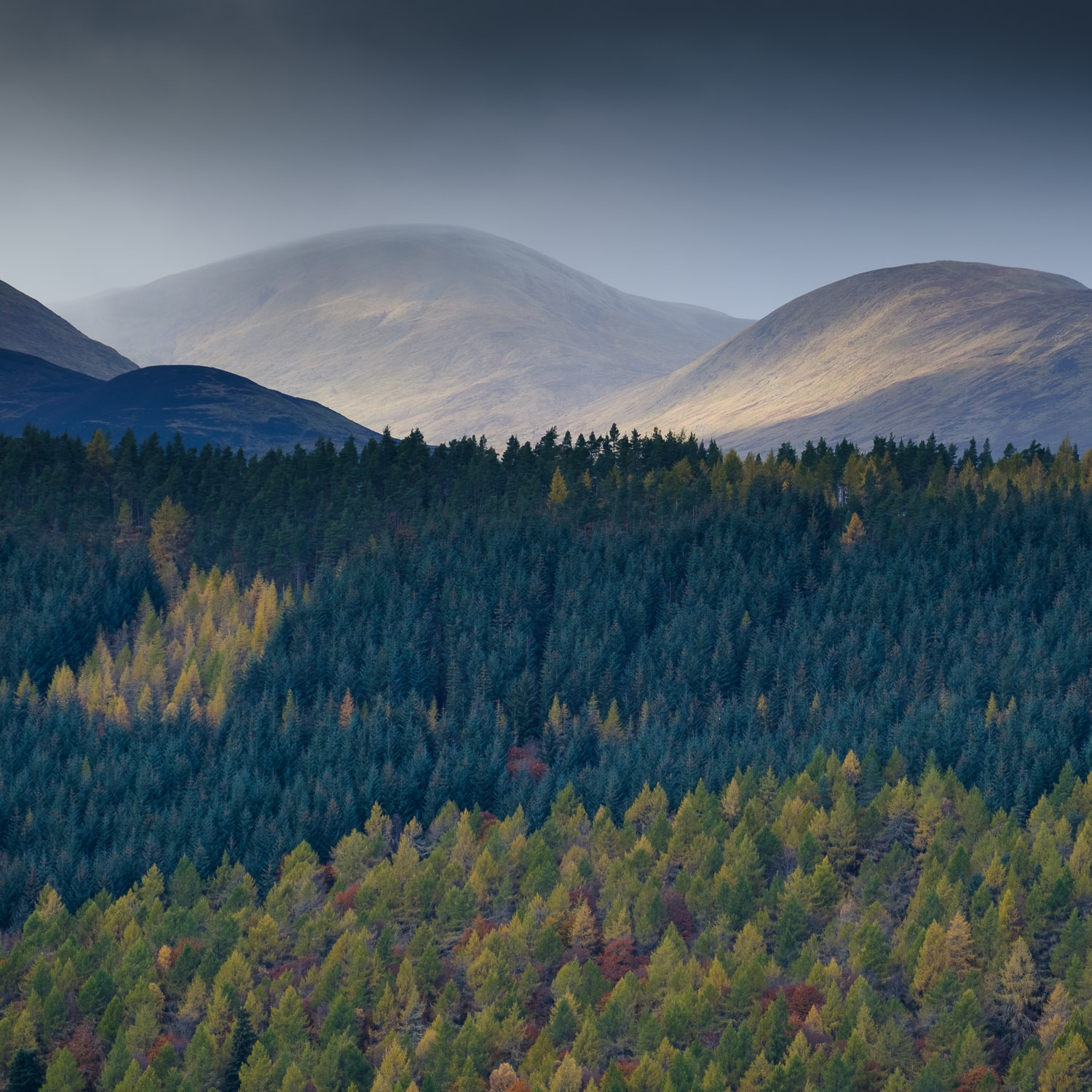 Christopher Swan-Perthshire-Autumn-29.jpg
