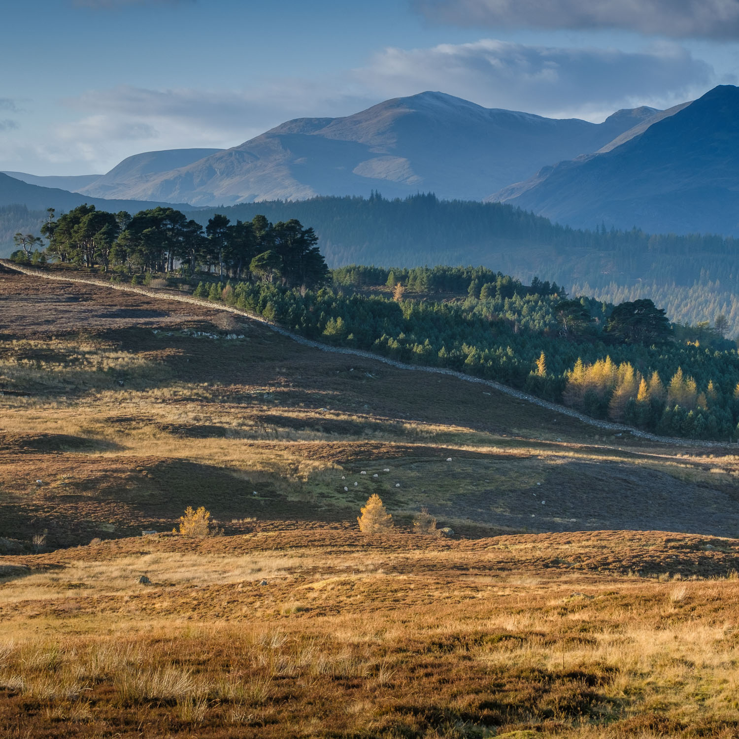 Christopher Swan-Perthshire-Autumn-36.jpg