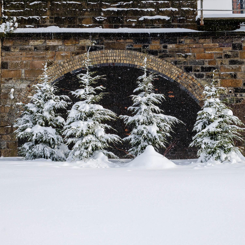 Christopher Swan-Glasgow Snow 2-2.jpg
