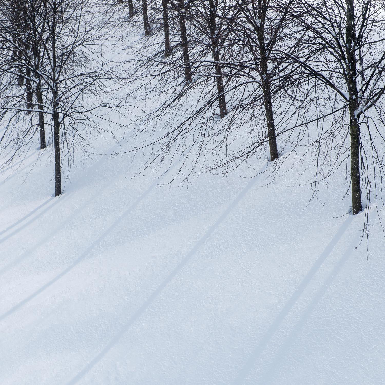 Christopher Swan-Glasgow Snow 2-4.jpg