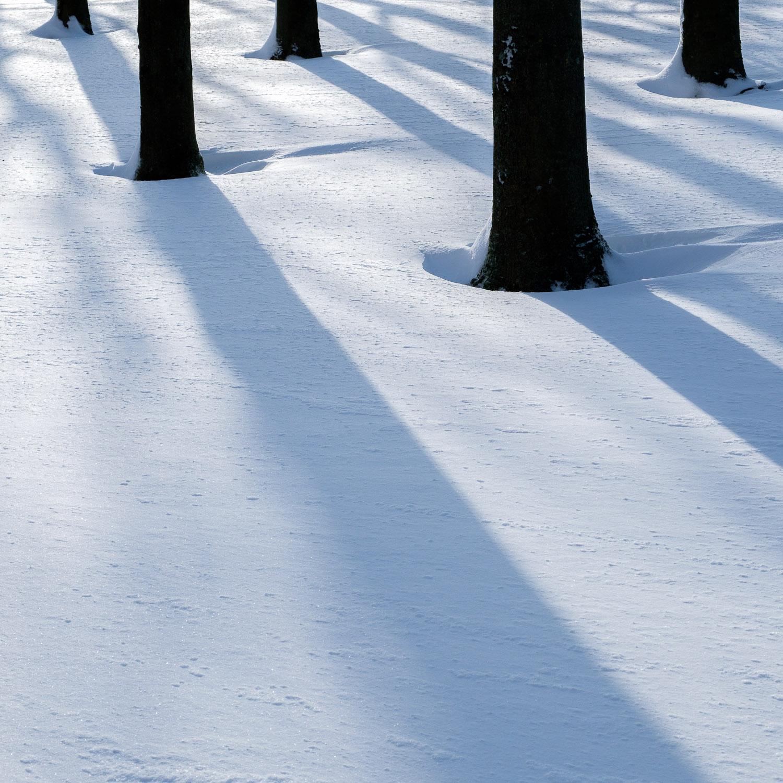 Christopher Swan-Glasgow Snow 2-7.jpg