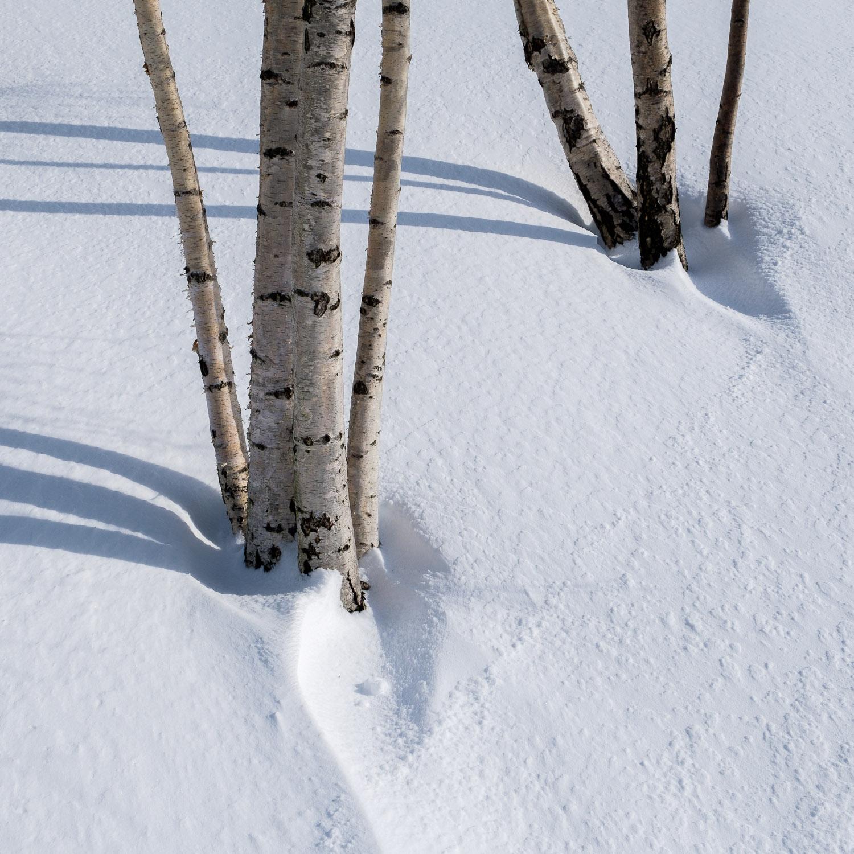 Christopher Swan-Glasgow Snow 2-16.jpg