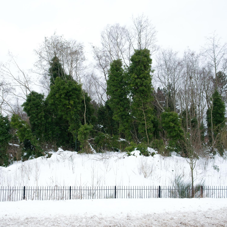 Christopher Swan-Glasgow Snow 3-8.jpg