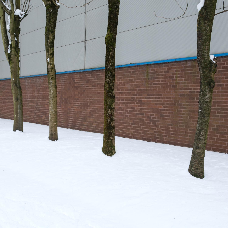 Christopher Swan-Glasgow Snow 3-18.jpg