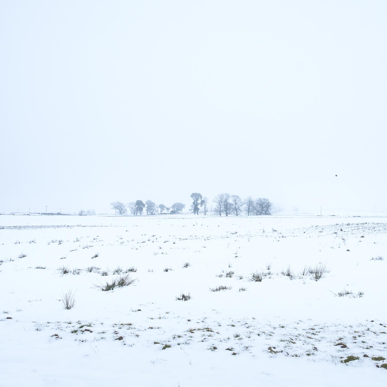 Christopher Swan-Whitespace-2.jpg