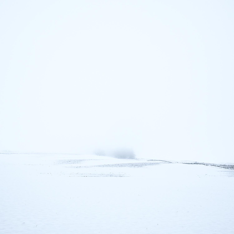 Christopher Swan-Whitespace-3.jpg